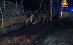 Grosseto: tre persone morte carbonizzate nell'auto incendiata nello schianto contro un albero