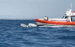 Livorno: catamarano si rovescia a Rosignano. Salvati due anziani finiti in mare