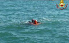 Livorno: delfino in difficoltà salvato dai vigili del fuoco