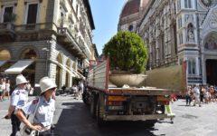 Firenze, terrorismo: installate nuove fioriere antiattentati negli obiettivi sensibili