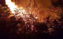 Massarosa (Lu): chiusa la panoramica per Lucca causa incendio che lambisce la strada
