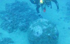 Livorno: mina della seconda guerra mondiale trovata in mare, fuori dal porto