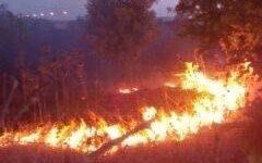 Podenzana (Ms): 80enne muore mentre tenta di spegnere l'incendio che minaccia la casa