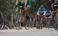 Gaiole in Chianti (Si): Eroica, migliaia di ciclisti sulle strade bianche. Gimondi festeggia 75 anni