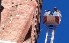 Pistoia: vigili del fuoco su campanile simbolo per rimuovere piante pericolose. L'allarme durante mercato settimanale