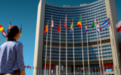 Onu: concorso per giovani funzionari nella cooperazione internazionale