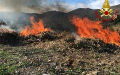 Capraia (Li): vasto incendio di vegetazione, intervengono i vigili del fuoco