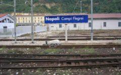 Calcio: Napoli - Fiorentina, più corse metropolitane dallo stadio alla fine del match programmate dalle Ferrovie