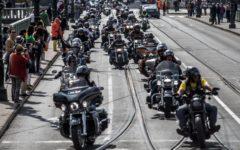 Moto: arriva LiveWire, la Harley Davidson elettrica. Scettici i bikers