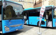Arezzo. sette nuovi autobus extraurbani Tiemme per il trasporto pubblico regionale