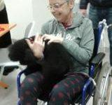 Sanità: animali, ammesso l'accesso alle visite dall'Azienda sanitaria Toscana centro. Le regole da seguire