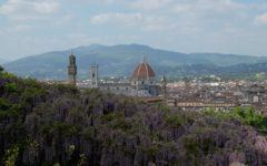 Week End 14-15 aprile: «Half Marathon Firenze Vivicittà», spettacoli, eventi, mostre