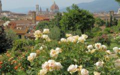 Week end 27-28 aprile a Firenze e in Toscana: spettacoli, eventi, mostre