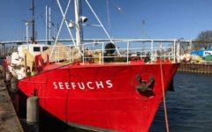 Migranti: Salvini, no al traffico di esseri umani, no al business dell'immigrazione clandestina