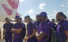 Calcio: Schalke 04 - Fiorentina. Dalle 16 diretta streaming