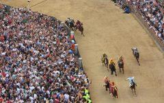 Palio di Siena: assegnati cavalli, sorte bacia Lupa, Leocorno e Drago