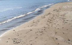 Manovra, i Verdi denunciano: «Norma salva ville e svendita spiagge nel maxiemendamento»