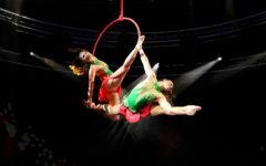 Firenze: al TuscanyHall arriva Le Cirque World's Top Performers con «Alis»