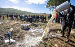 Cagliari: verso un accordo sul prezzo del latte, referendum nelle campagne
