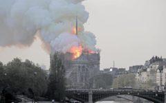 Rogo Notre Dame: l'esultanza dei jihadisti, la notizia su Site